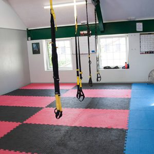elite-fitness-gym4